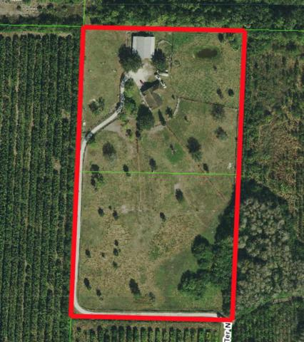 4451 148th Terrace N, Loxahatchee Groves, FL 33470 (#RX-10480467) :: Blue to Green Realty