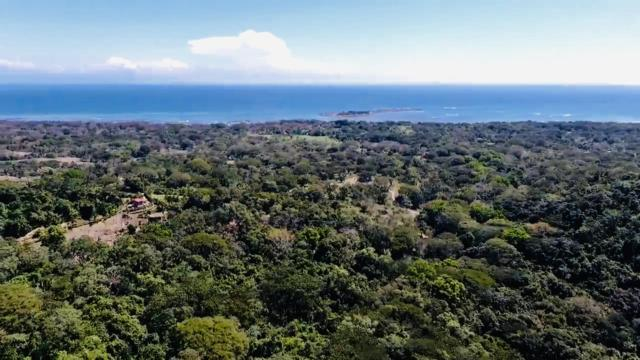 00 Cabuya, Costa Rica, Out Of Country, FL 00000 (MLS #RX-10536570) :: Berkshire Hathaway HomeServices EWM Realty