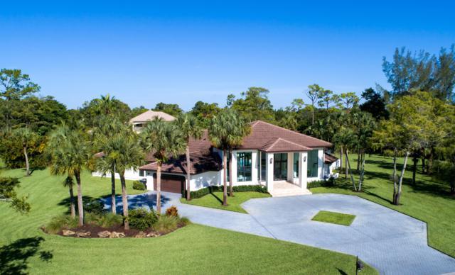 6101 NW 61st Avenue, Parkland, FL 33067 (#RX-10550445) :: Weichert, Realtors® - True Quality Service