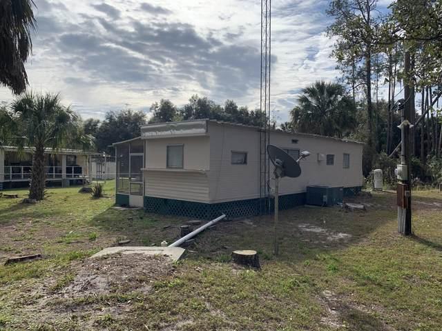 23670 NE 135th Lane, Fort McCoy, FL 32134 (#RX-10599120) :: Ryan Jennings Group