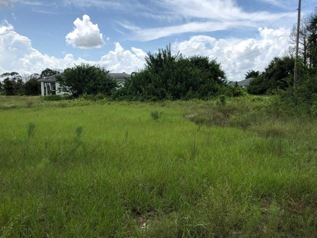 1152 Ebert Street E, Lehigh Acres, FL 33974 (#RX-10610399) :: Ryan Jennings Group