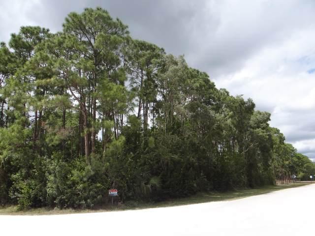 Lot Ag-278 Apache Boulevard, Loxahatchee, FL 33470 (#RX-10611325) :: Ryan Jennings Group