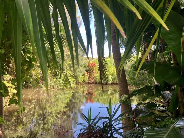 NW Address Not Published, Boca Raton, FL 33486 (MLS #RX-10656828) :: Laurie Finkelstein Reader Team