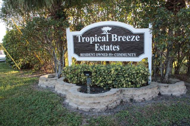 4077 Cardinal Road, Boynton Beach, FL 33436 (#RX-10679562) :: Posh Properties
