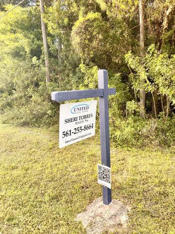 17665 N 43rd Road, Loxahatchee, FL 33470 (MLS #RX-10692400) :: United Realty Group