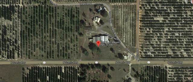 1351 Us 17 Highway N, Lake Wales, FL 33867 (MLS #RX-10703379) :: Castelli Real Estate Services