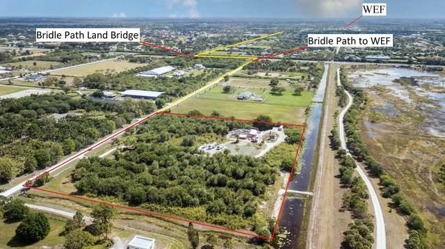 16450 Norris Road, Wellington, FL 33470 (MLS #RX-10703571) :: Berkshire Hathaway HomeServices EWM Realty
