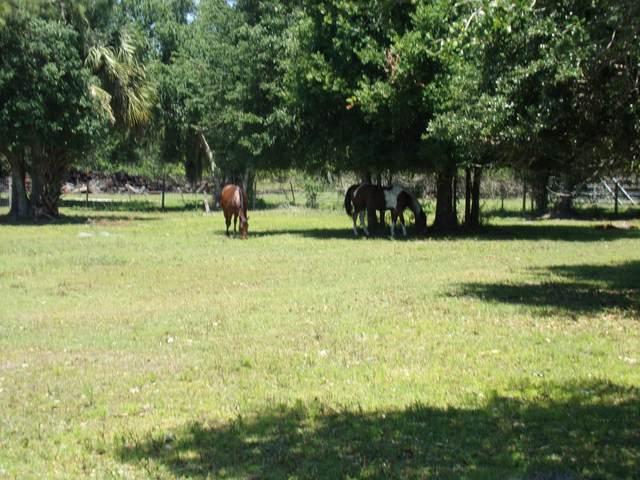 8250 SW Tommy Clements Lane #2, Indiantown, FL 34956 (#RX-10705251) :: Posh Properties