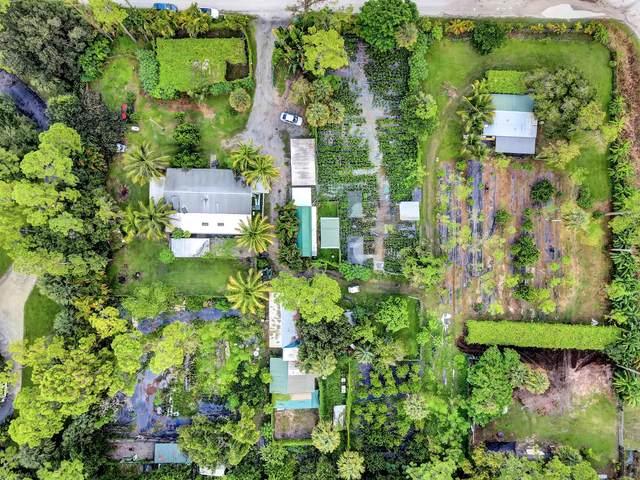 1485 C Road, Loxahatchee Groves, FL 33470 (#RX-10745509) :: Heather Towe   Keller Williams Jupiter