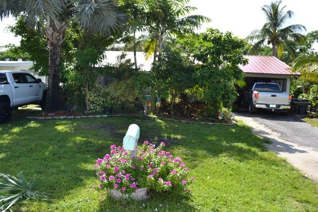 217 Reo Drive, Jupiter, FL 33458 (MLS #RX-10747275) :: The Paiz Group