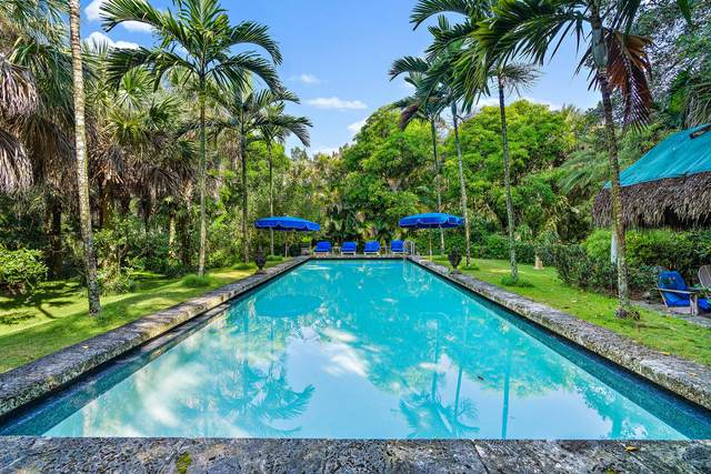 8674 SE Jardin Street, Hobe Sound, FL 33455 (MLS #RX-10743680) :: Dalton Wade Real Estate Group
