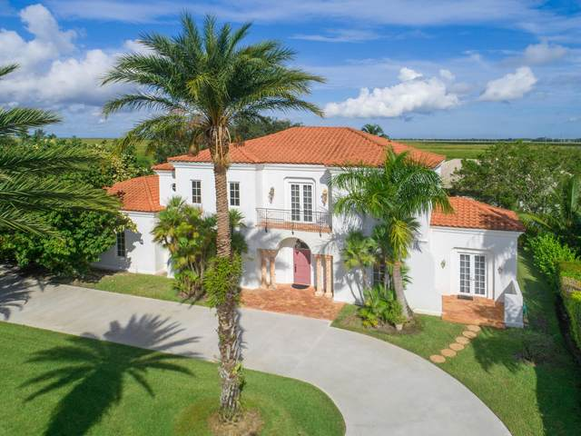 15680 Meadow Wood Drive, Wellington, FL 33414 (#RX-10745857) :: Michael Kaufman Real Estate