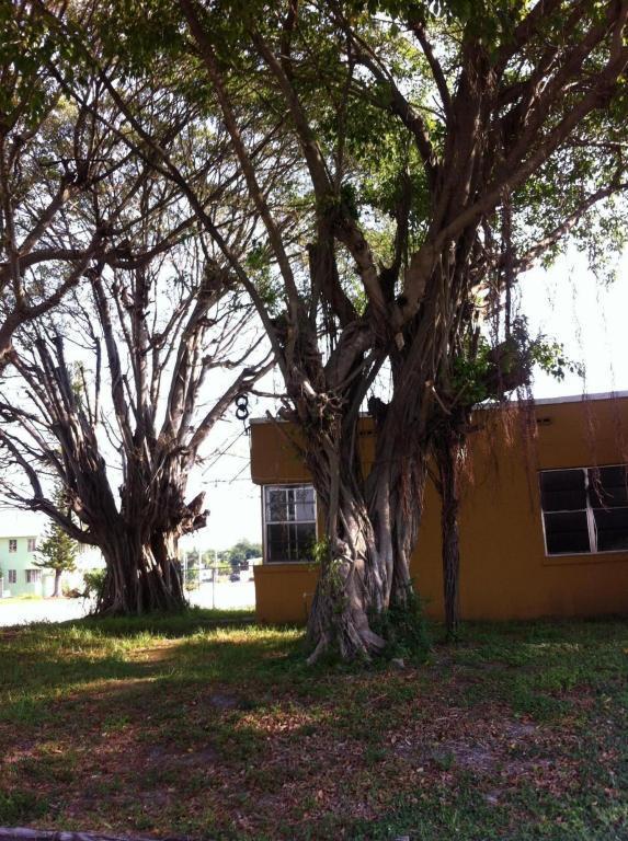 541 29th Street, West Palm Beach, FL 33407 (#RX-10407140) :: The Carl Rizzuto Sales Team
