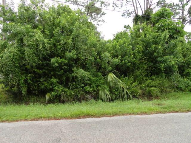 Tbd Hickory Drive, Fort Pierce, FL 34982 (#RX-10514800) :: Blue to Green Realty