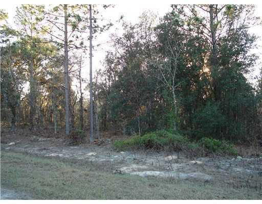 0000 SW 125th Ct Road Lot 10, Ocala, FL 34481 (MLS #RX-10520746) :: Berkshire Hathaway HomeServices EWM Realty