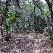 4200 Forbes Trail, Venice, FL 34292 (#RX-10522134) :: Ryan Jennings Group