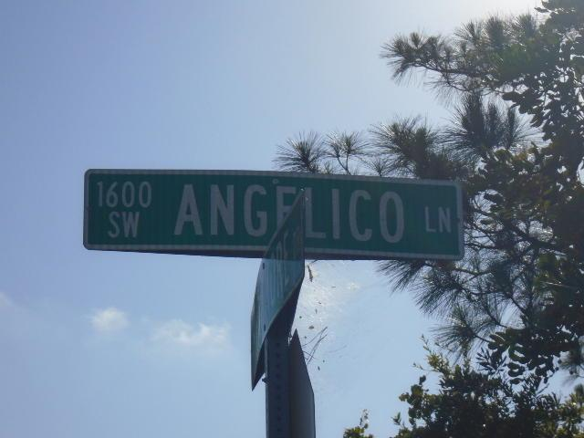 1681 SW Angelico Lane, Port Saint Lucie, FL 34983 (#RX-10533456) :: Weichert, Realtors® - True Quality Service