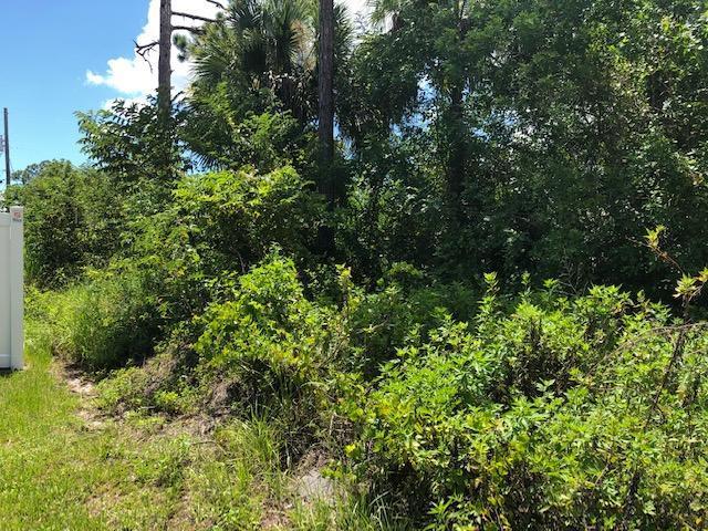 3873 SW Rosser Boulevard, Port Saint Lucie, FL 34953 (MLS #RX-10546817) :: Berkshire Hathaway HomeServices EWM Realty