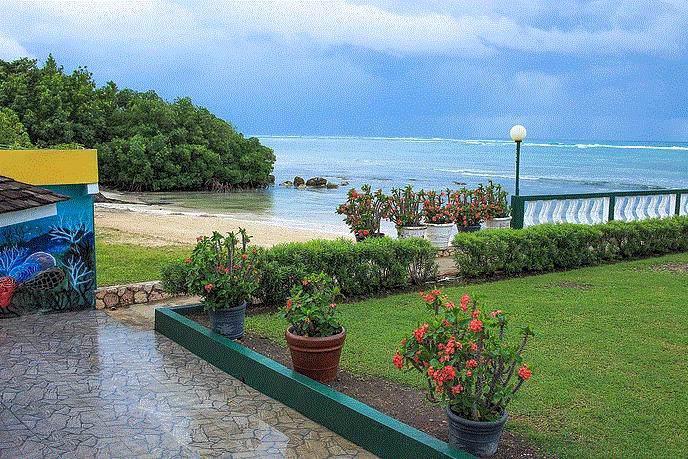 99 Greenwood, Montego Bay Jamaica - Photo 1