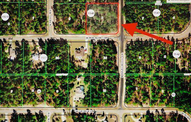 6222 N Hazelwood Drive, Citrus Springs, FL 34433 (#RX-10601239) :: Ryan Jennings Group