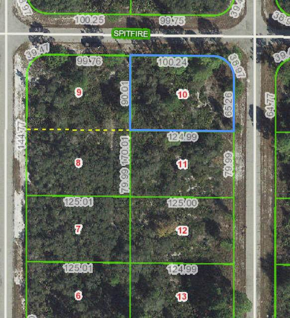 314 Spitfire Street NW, Lake Placid, FL 33852 (#RX-10604000) :: Ryan Jennings Group