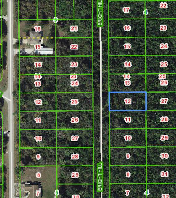 551 Bright Hill Avenue, Lake Placid, FL 33852 (#RX-10604156) :: Ryan Jennings Group