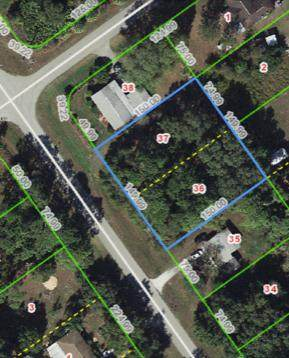 459 Washington Boulevard, Lake Placid, FL 33852 (MLS #RX-10604168) :: Berkshire Hathaway HomeServices EWM Realty