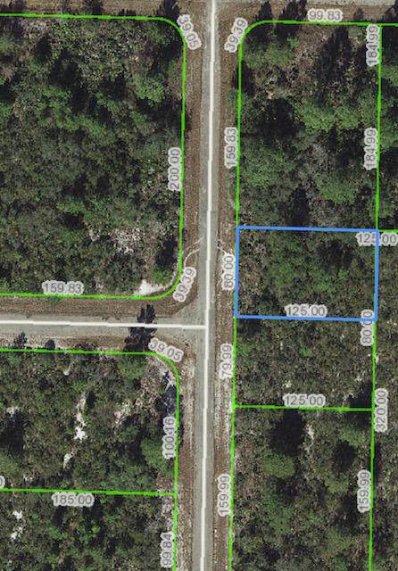 1115 Skyline Street, Lake Placid, FL 33852 (MLS #RX-10604174) :: Berkshire Hathaway HomeServices EWM Realty