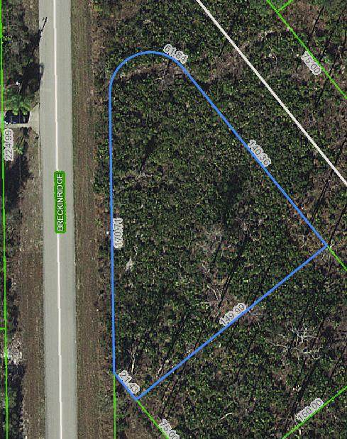 354 Durham Avenue, Lake Placid, FL 33852 (MLS #RX-10618738) :: Berkshire Hathaway HomeServices EWM Realty