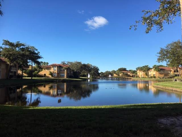4807 Via Palm Lakes - Photo 1
