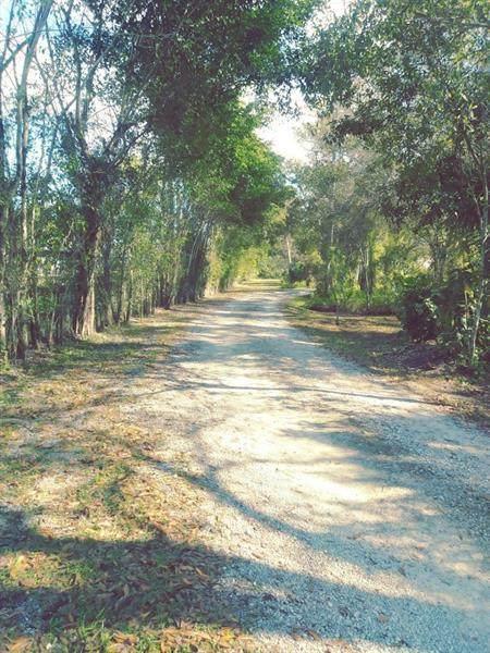1640 C Road, Loxahatchee Groves, FL 33470 (#RX-10632586) :: Ryan Jennings Group