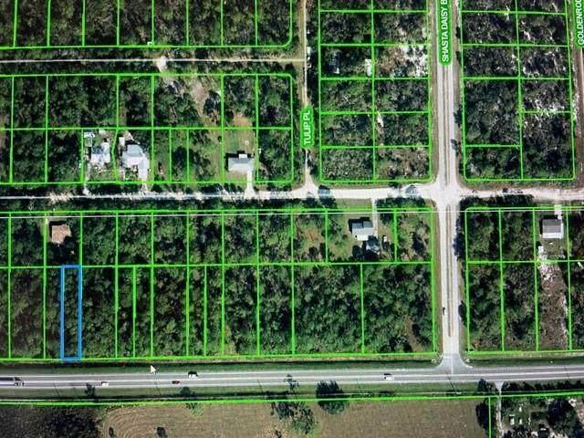 4004 Sr 66, Sebring, FL 33875 (MLS #RX-10674358) :: The Jack Coden Group