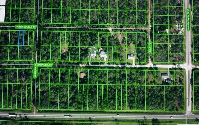 1505 Honeysuckle Street, Sebring, FL 33875 (#RX-10678260) :: Baron Real Estate