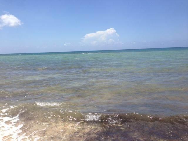10 Bayshore Drive, Grand Bahama Island, FL 00000 (MLS #RX-10693558) :: Castelli Real Estate Services