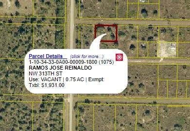 313 NW 313th Street, Okeechobee, FL 34972 (#RX-10698243) :: Posh Properties