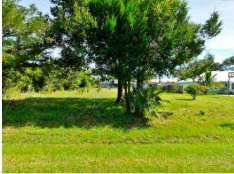5508 Myrtle Drive, Fort Pierce, FL 34982 (#RX-10710735) :: Real Treasure Coast