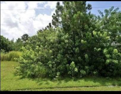 2438 SW Datura Avenue, Port Saint Lucie, FL 34953 (#RX-10724332) :: Michael Kaufman Real Estate