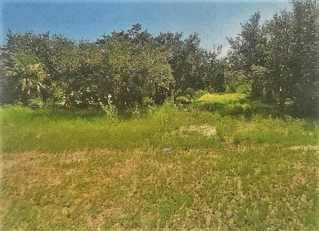 0 Village Palm Lane - Photo 1