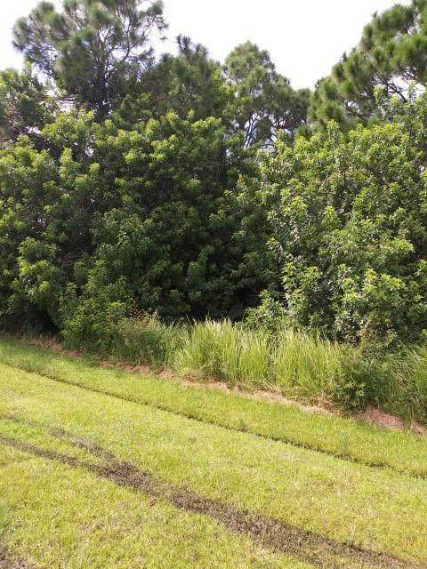 124 SW Danville Circle SW, Port Saint Lucie, FL 34953 (#RX-10748520) :: Baron Real Estate