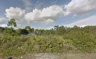 000 SW South View Court, Dunnellon, FL 34431 (MLS #RX-10753797) :: Dalton Wade Real Estate Group