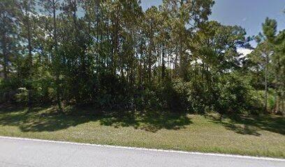 2221 San Filippo Drive SE, Palm Bay, FL 32909 (#RX-10754228) :: IvaniaHomes | Keller Williams Reserve Palm Beach