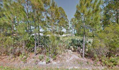 2687 Ramsdale Drive SE, Palm Bay, FL 32909 (#RX-10754231) :: IvaniaHomes | Keller Williams Reserve Palm Beach