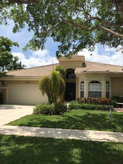 1733 Annandale Circle, Royal Palm Beach, FL 33411 (#RX-10626485) :: Treasure Property Group