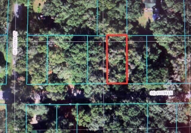 Tbd SE 130 Lane, Oklawaha, FL 32179 (MLS #RX-10745430) :: Castelli Real Estate Services