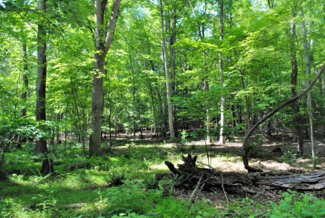 0 Woods On The Lake Rd, Radford, VA 24141 (MLS #849889) :: Five Doors Real Estate