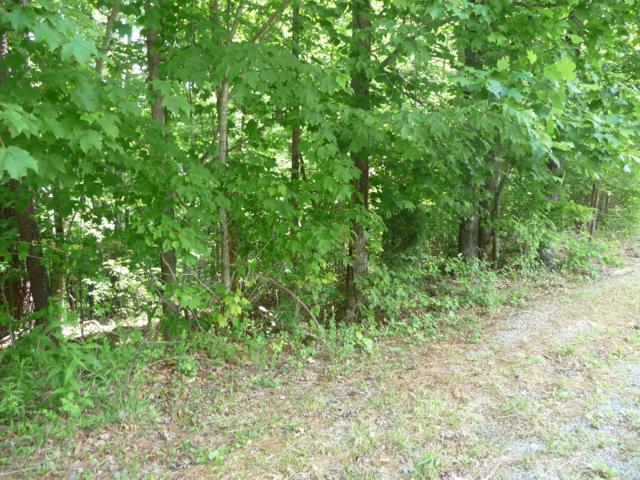 Lot 8 Fields Ave, Blue Ridge, VA 24064 (MLS #859370) :: Five Doors Real Estate