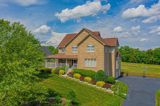 210 Magnolia Ln, Daleville, VA 24083 (MLS #859701) :: Five Doors Real Estate