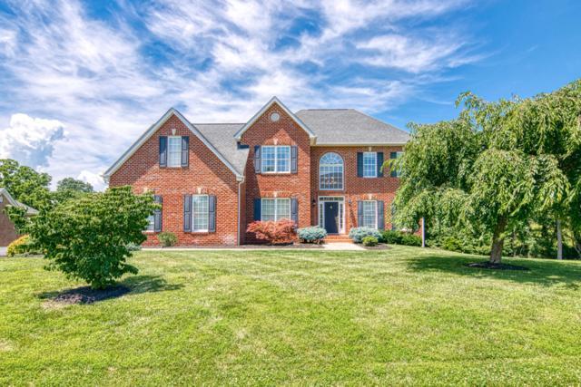 181 Scarlet Dr, Daleville, VA 24083 (MLS #860768) :: Five Doors Real Estate