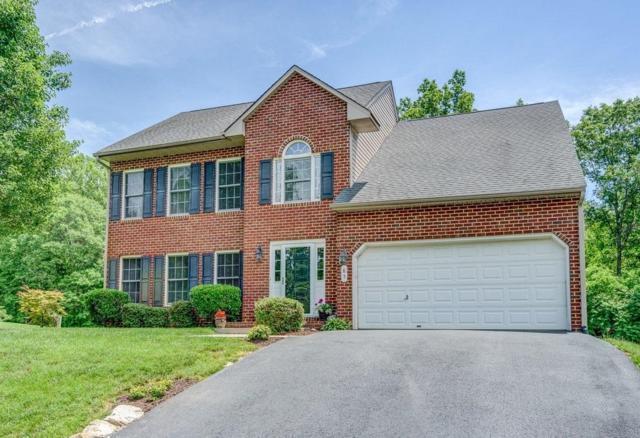85 Big Branch Trl, Moneta, VA 24121 (MLS #861071) :: Five Doors Real Estate