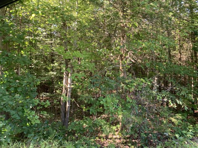Lot 135 Forest Lawn Dr, Moneta, VA 24121 (MLS #861192) :: Five Doors Real Estate